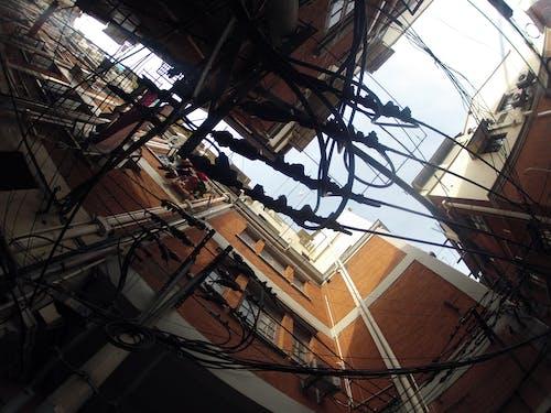 Free stock photo of shanghai