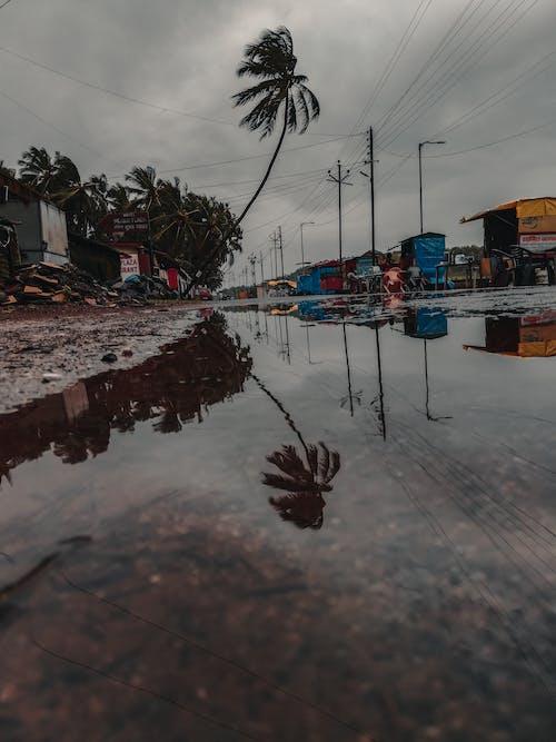 Fotos de stock gratuitas de agua, carretera, charco
