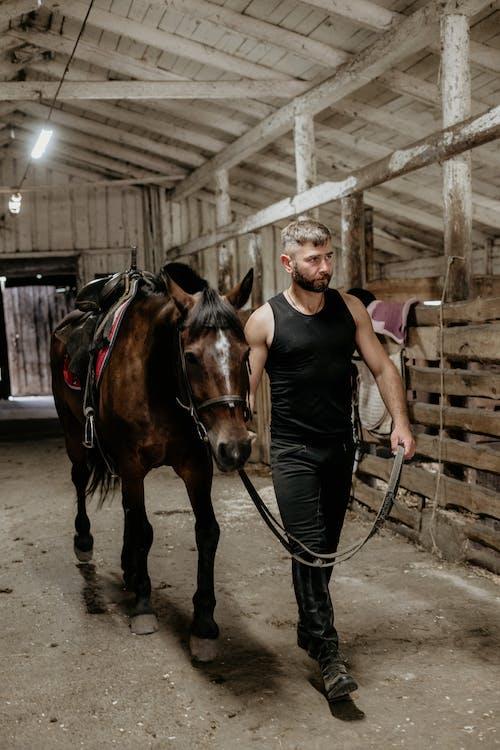 Man in Black Tank Top Riding Brown Horse