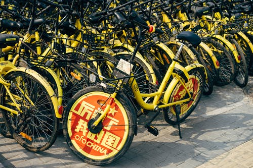 A Collection of Bicycles Impounded