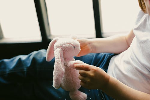 Person Holding Pink Rabbit Plush Toy