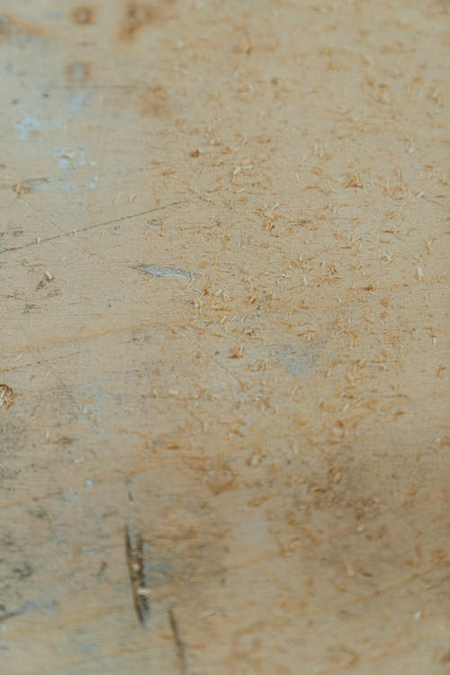 Základová fotografie zdarma na téma deska, dílna, dřevěné hobliny