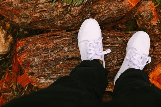 Free stock photo of fashion, feet, trunk, shoes