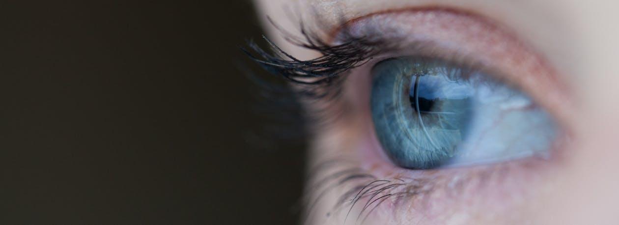 Free stock photo of eye, eyelash, eyelid