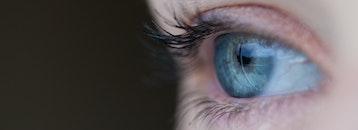 eye, macro, human
