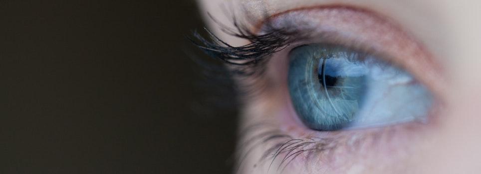 Free stock photo of eye, macro, human, see