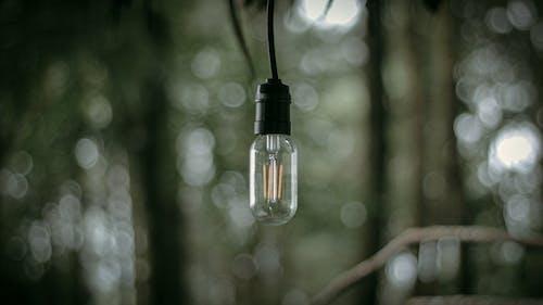 Close-Up Shot of a Glass Light Bulb
