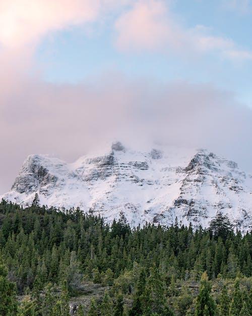 atardecer, invierno, montañacubierta de nieve 的 免費圖庫相片