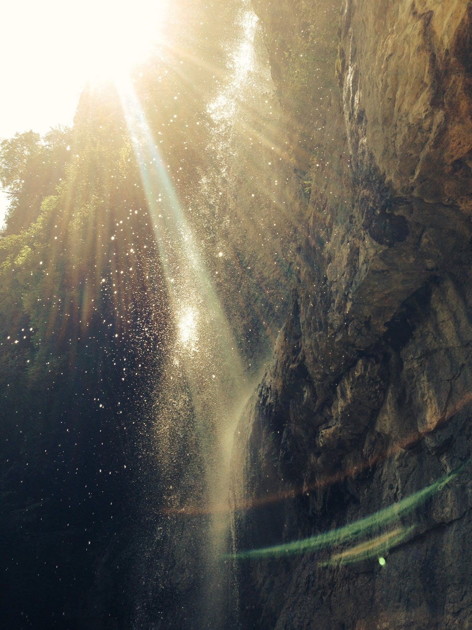 Free stock photo of light, nature, water, wall