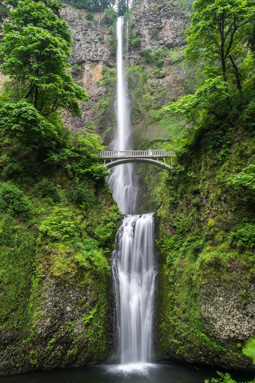 Foto profissional grátis de água, cachoeira, corredeiras, corrente