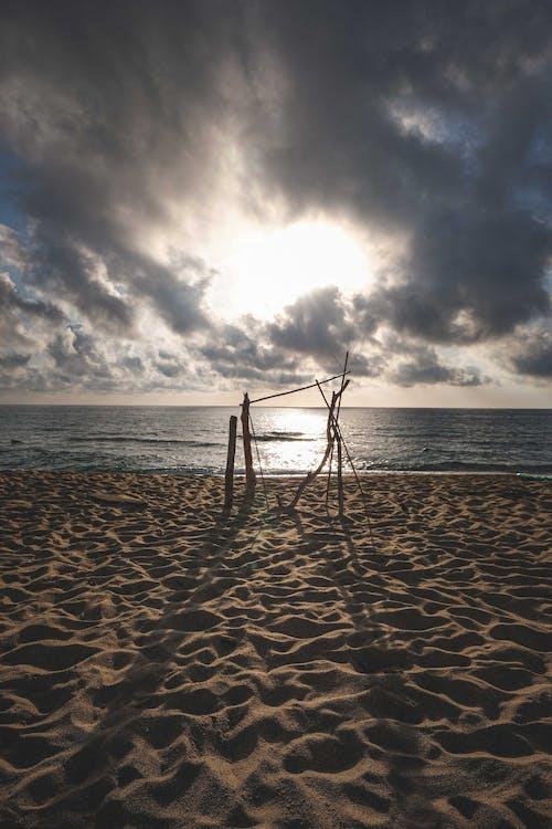 Photos gratuites de bois, bord de l'eau, bord de la mer
