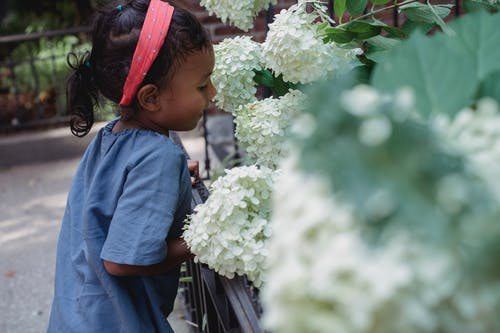 Small ethnic girl smelling flowers in garden