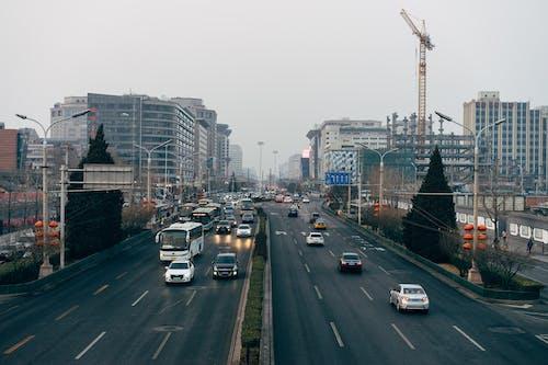 アジア, クレーン, シティの無料の写真素材
