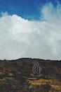 road, clouds, hill