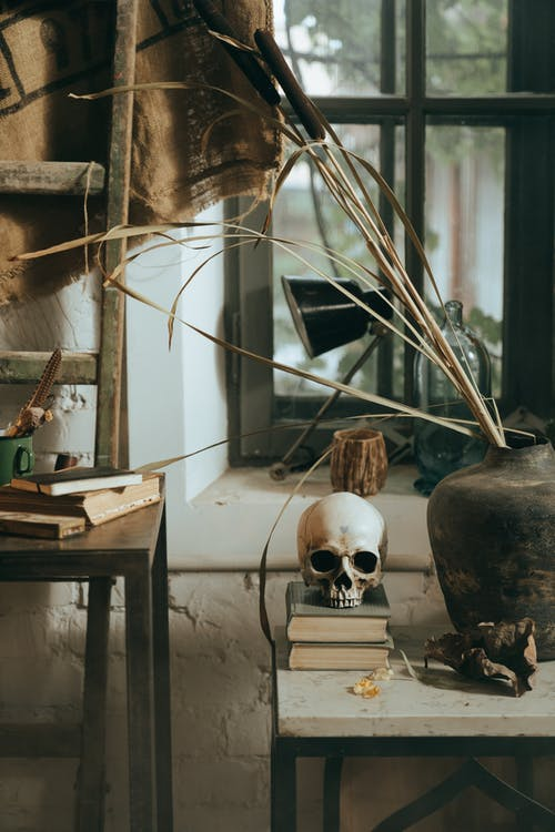 White and Black Skull Figurine on Brown Wooden Table