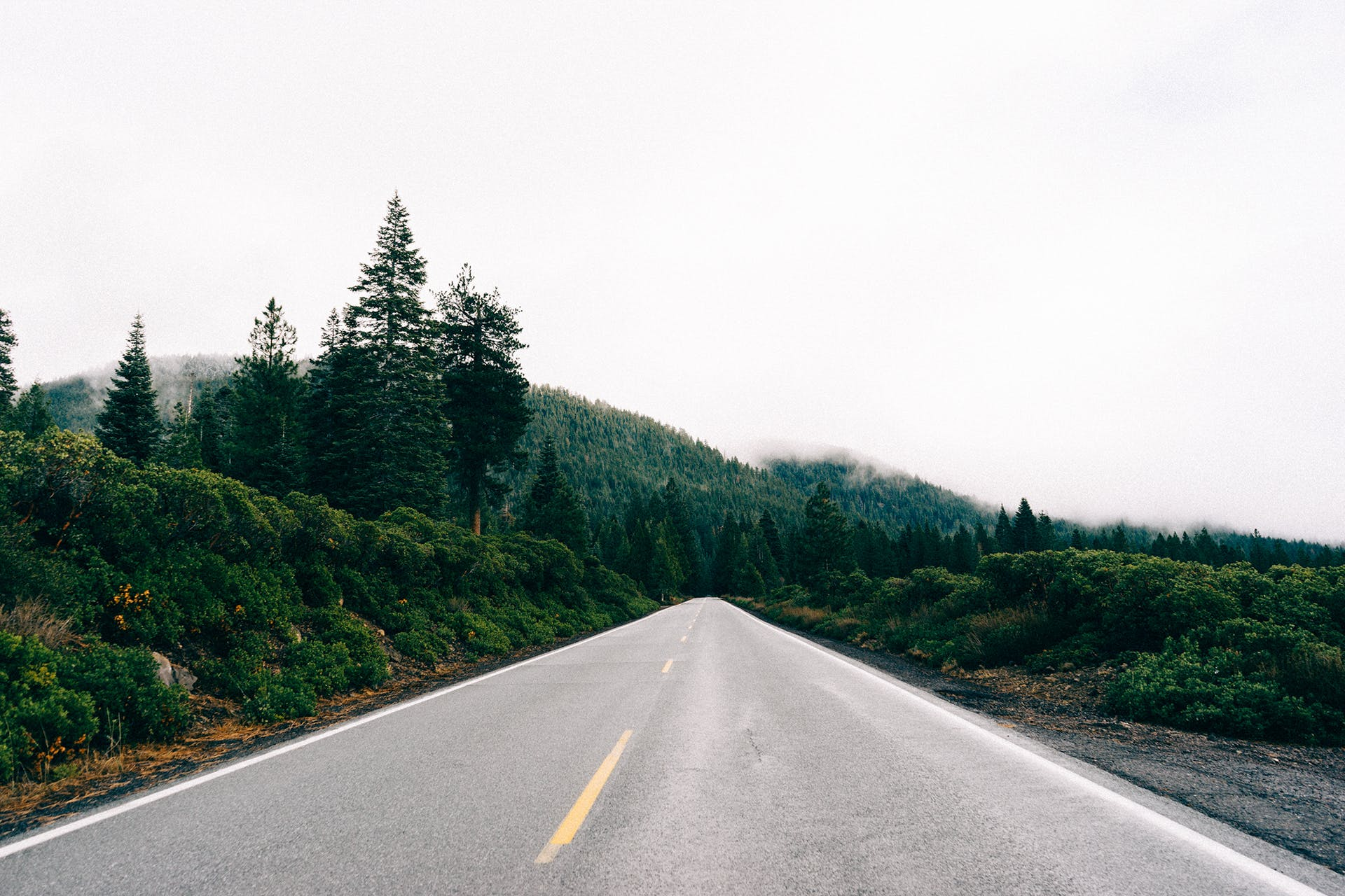 Free stock photo of road, straight