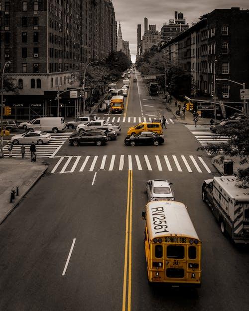 Immagine gratuita di america, architettura, asfalto