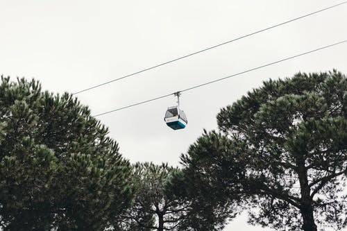 Cable car over trees in daylight