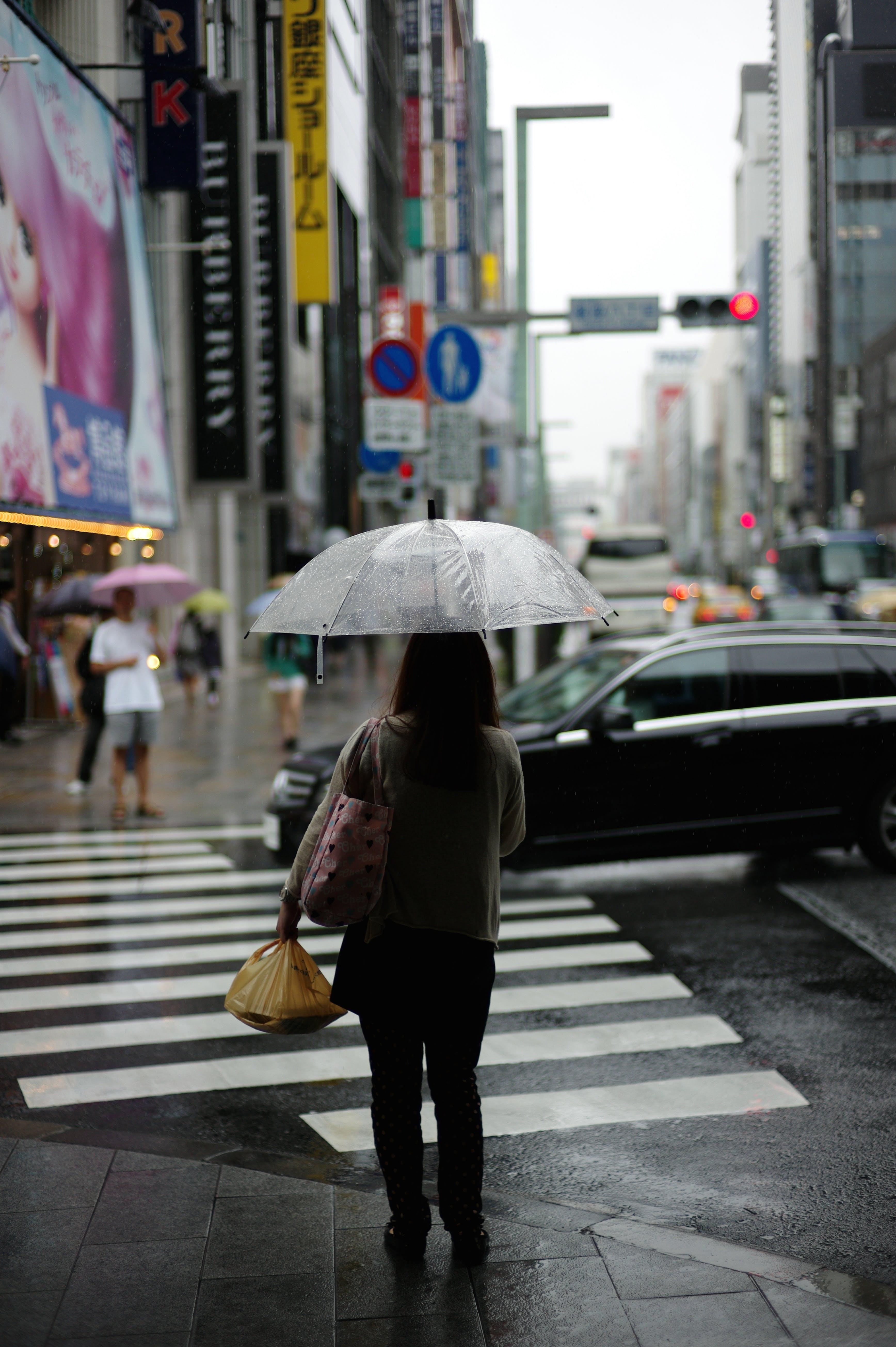 Free stock photo of city, people, street, walking