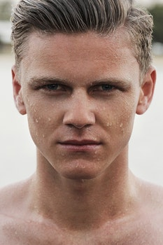 Free stock photo of man, model, wet, head