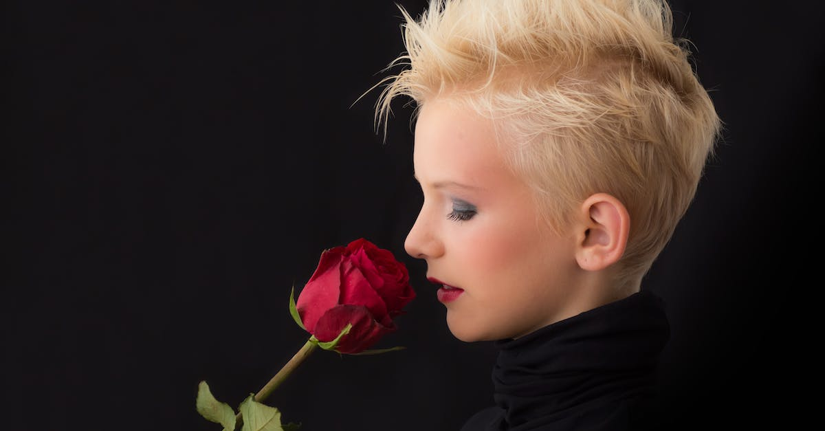 Woman Holding Red Rose 183 Free Stock Photo