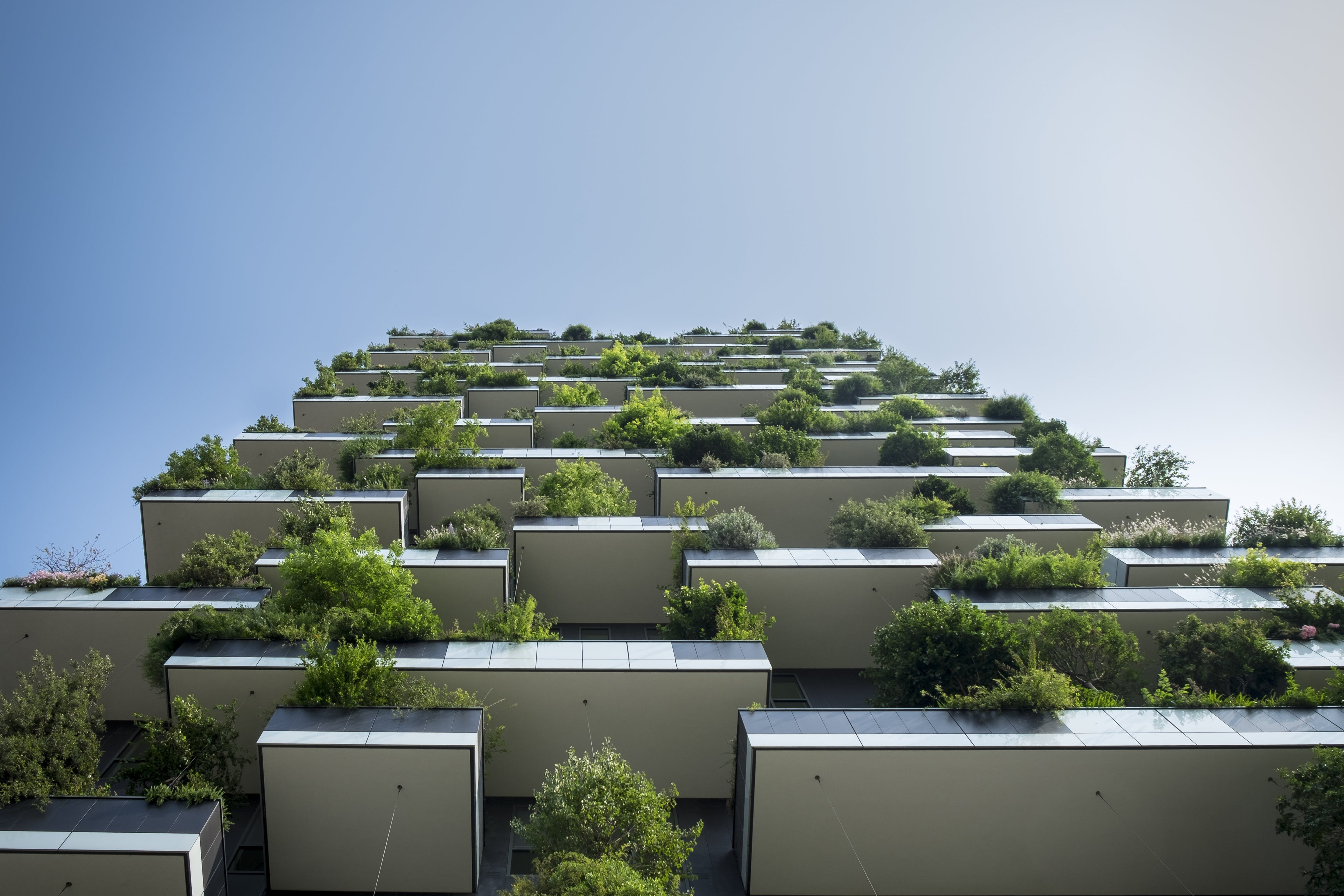 Low Angle Photo Of Building With Green Plants
