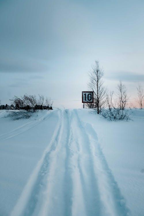 감기, 겨울, 경로, 경치가 좋은의 무료 스톡 사진