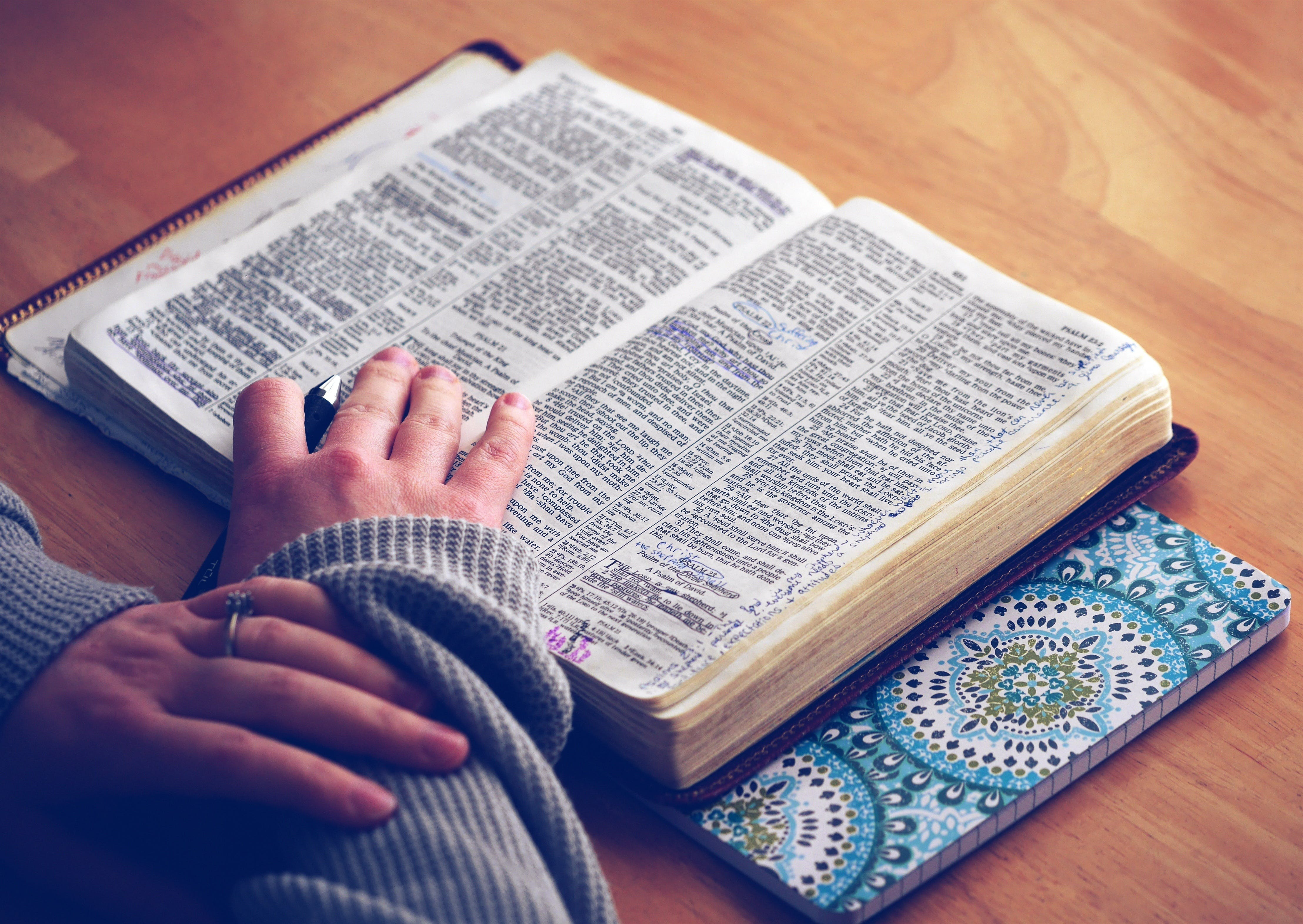 Free stock photo of person, hands, religion, book