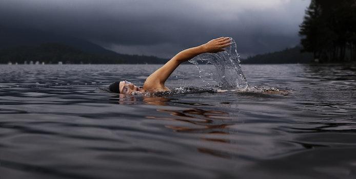 Free stock photo of lake, sport, swimming, exercise