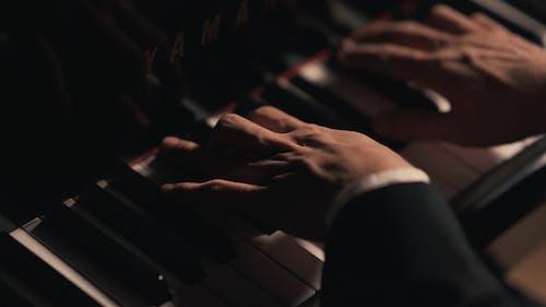 Kostenloses Stock Foto zu hände, klavier spielen, musiker