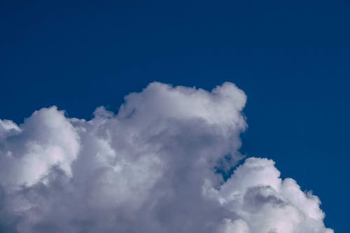 Low angle wonderful scenery of white fluffy cloud floating on endless bright blue sky on clear sunny day