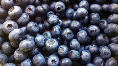food, fruits, blueberries