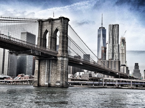 Free stock photo of city, water, buildings, bridge