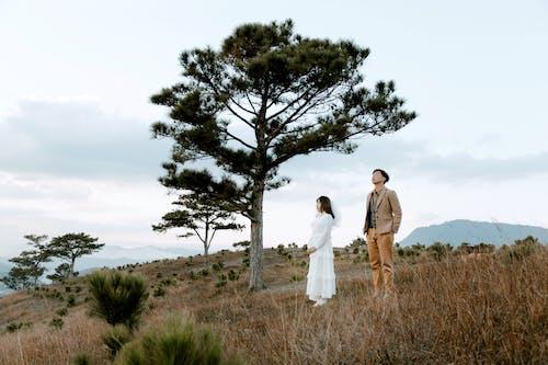 Základová fotografie zdarma na téma bílé šaty, chvíle, dvojice, elegantní