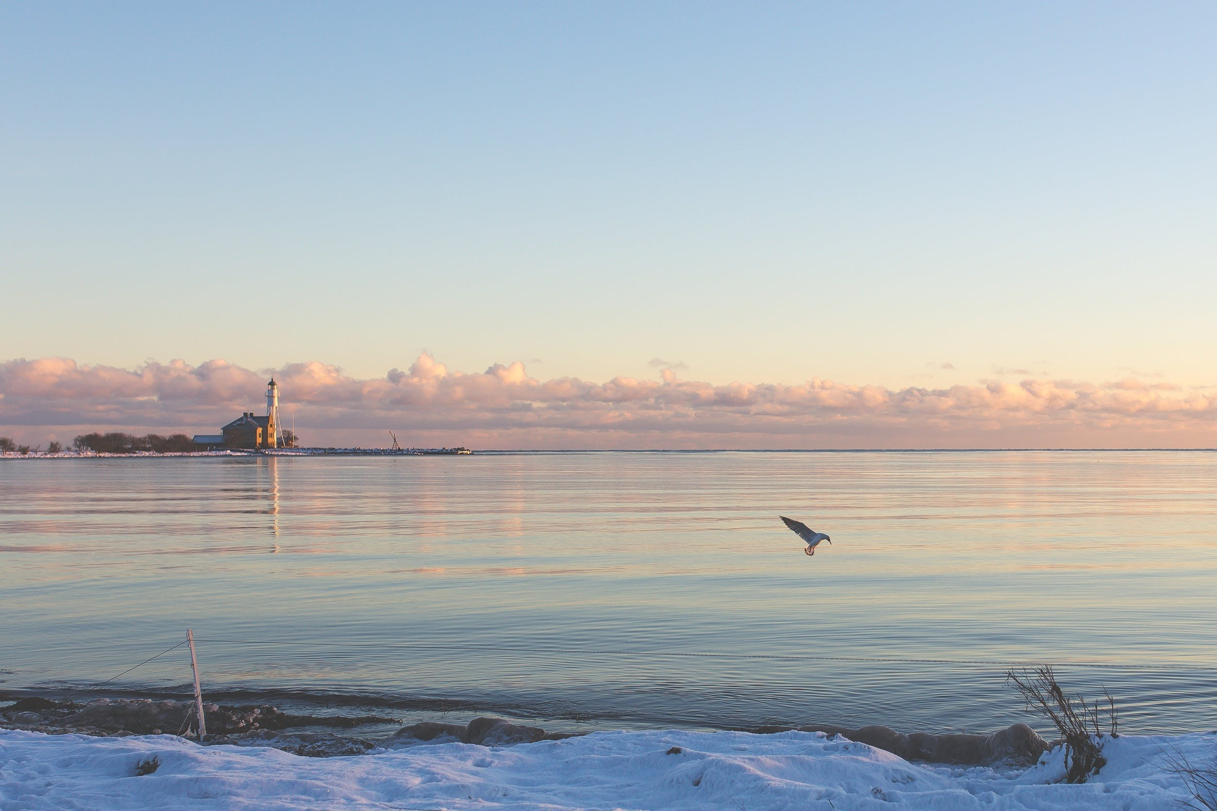 Free stock photo of cold, snow, sea, nature