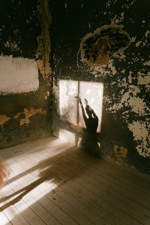 Бесплатное стоковое фото с балерина, в помещении, взаимодействие