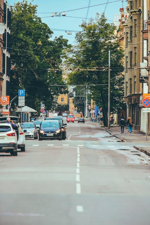 Darmowe zdjęcie z galerii z aleja, asfalt, auto