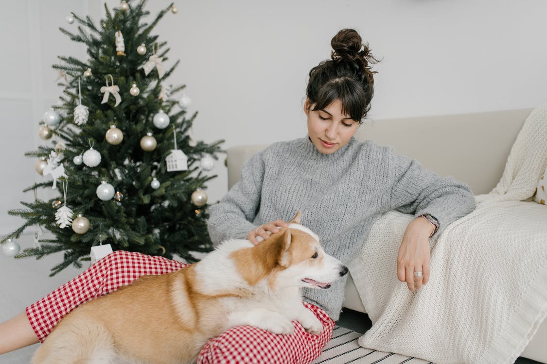 Woman in Gray Sweater Holding Brown and White Dog