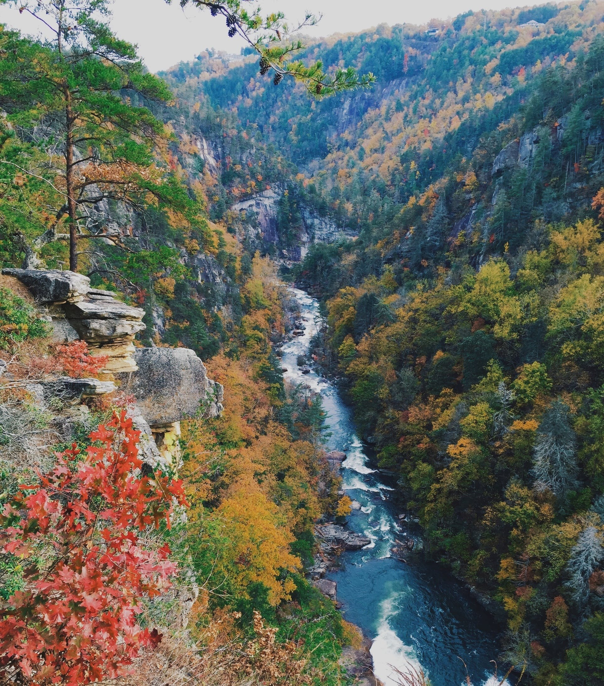 Free stock photo of autumn, cliff, creek, daylight