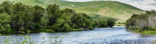 alabalık avı, Balık tutmak, balıkçılık, balıkçılık uçmak içeren Ücretsiz stok fotoğraf