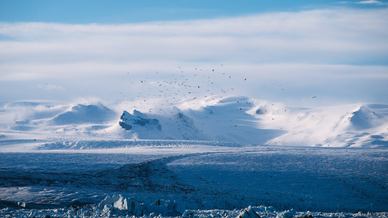 Free stock photo of cold, glacier, melting, snow