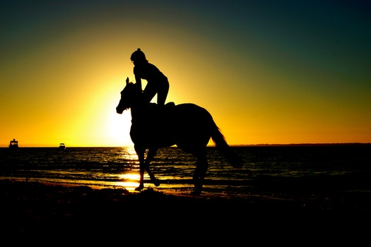 Woman on Horse during Sunset Sillhuou