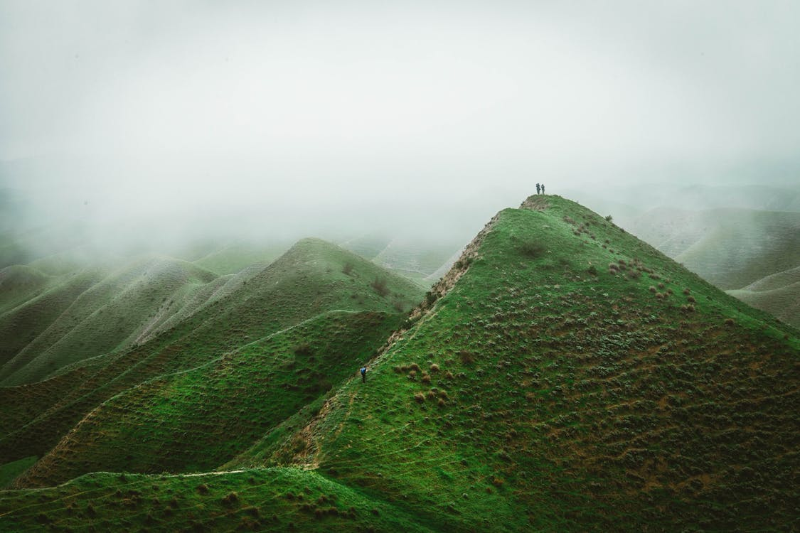 Základová fotografie zdarma na téma čerstvý, destinace, divoký