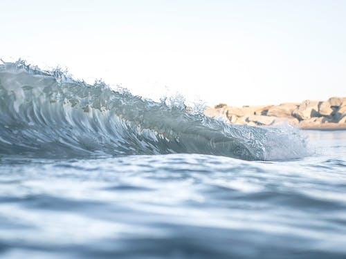Free stock photo of gotas, gotas de agua, mar