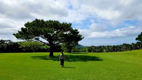Бесплатное стоковое фото с 一個 人, 大自然, 天空