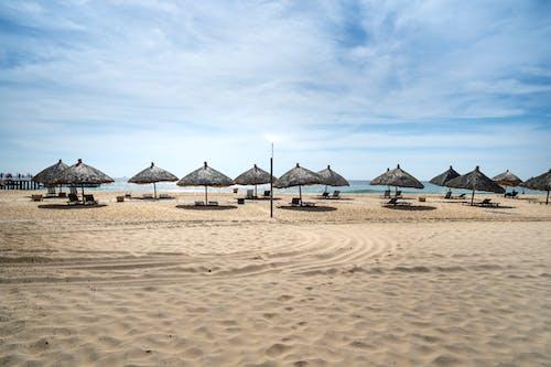 Straw umbrellas and deckchairs located on empty warm sandy beach near blue sea on clear sunny day