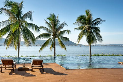 Deckchairs placed on plank poolside near lush tropical palms on seacoast beneath cloudless blue sky on sunny day