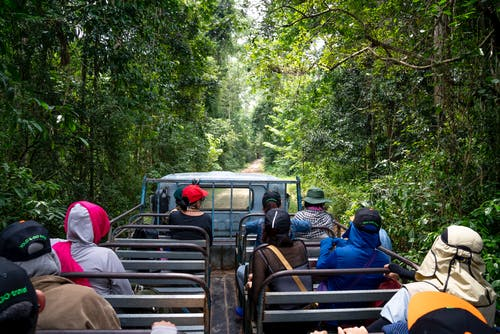 Anonymous travelers in headwear sitting on seats of truck driving through tropical forest