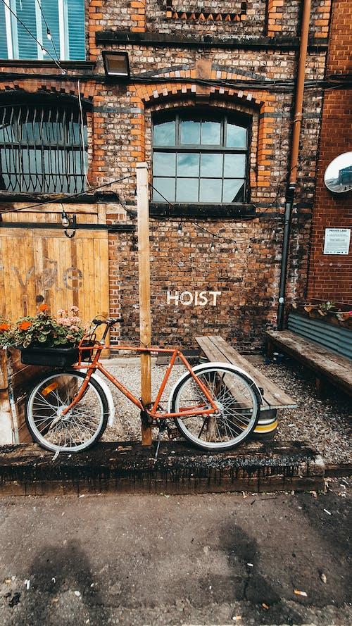 Bike with flowerpot parked on street