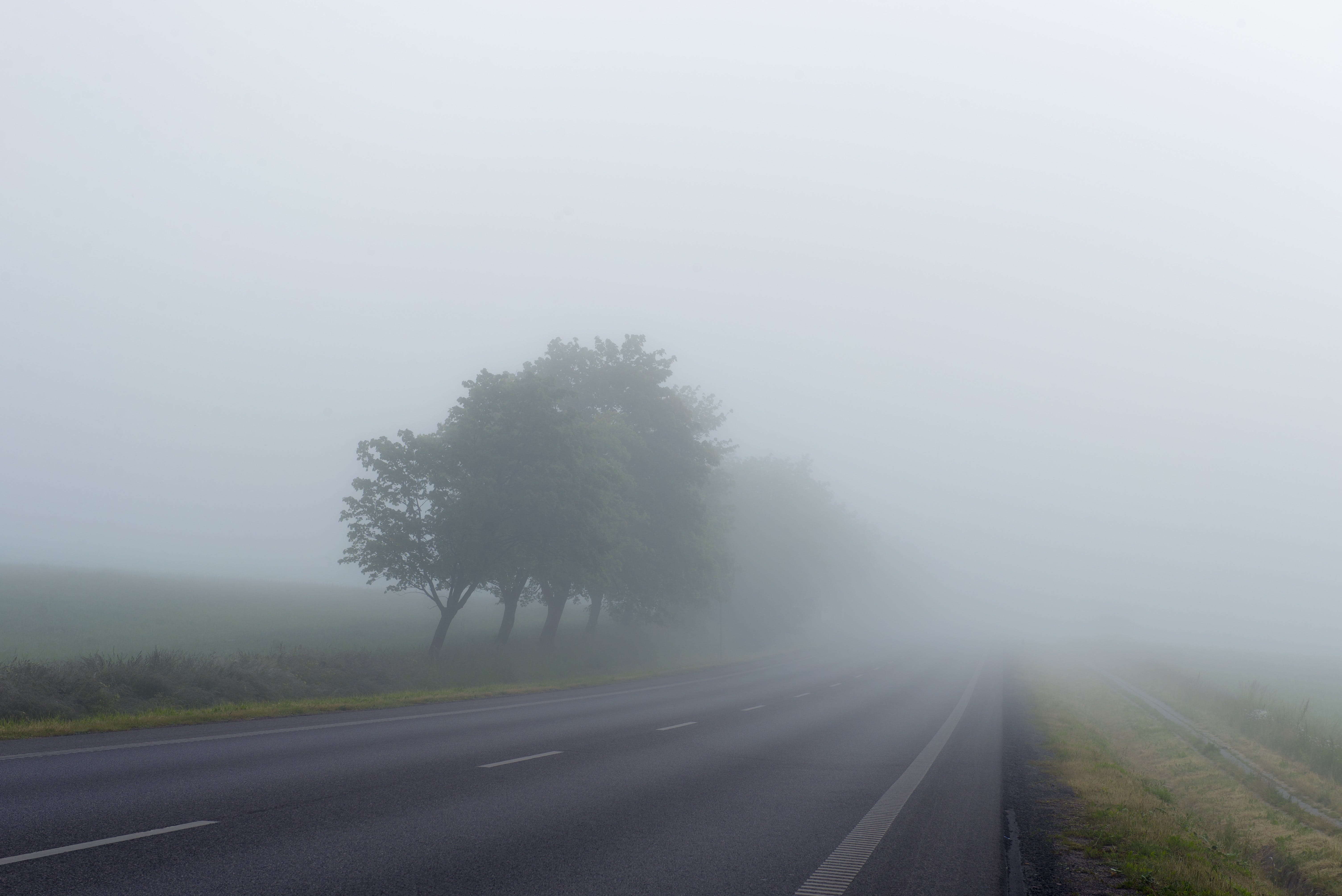 Free stock photo of road, fog, foggy, misty